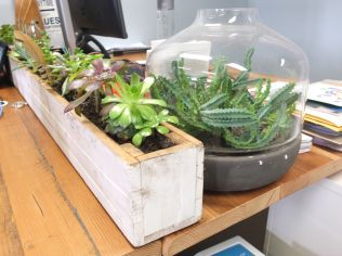 Recycled timber planters